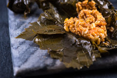 Vine leaves stuffed Royalty Free Stock Image