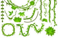 vine liana Uppsättning vektor royaltyfri illustrationer