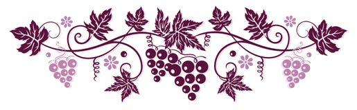 Vine med druvor royaltyfri illustrationer