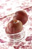 Vine peaches Stock Images