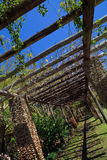 Vine Pergola at Fairchild Gardens. Diagonal view of a vine pergola in Fairchild Gardens in Miami stock photography