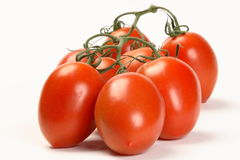 Vine Plum Tomatoes Stock Images