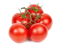 Vine ripe tomatoes. Stock Images