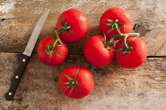 Vine ripe tomatoes and paring knife Royalty Free Stock Images