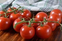 Vine ripened pearl tomatoes stock photos
