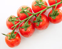 Vine ripened plum tomatoes Royalty Free Stock Photos
