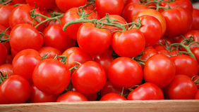 Vine Ripened Tomatoes. Whole, fresh vine ripened tomatoes in a produce stand box Royalty Free Stock Photo