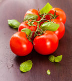 Vine-ripened tomatoes. With basil on a wooden plate Royalty Free Stock Photo