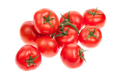 Vine ripened tomatoes. Bunch of vine ripened tomatoes isolated on white Royalty Free Stock Photos