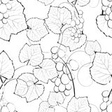Vine seamless background royalty free illustration