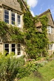 Vine on stone cottage, Lacock Royalty Free Stock Photography