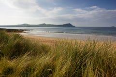 Vine strand beach Royalty Free Stock Photo