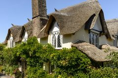 Vine and straw roof at Porlock, Somerset Royalty Free Stock Images