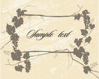 Vine Style Stock Image