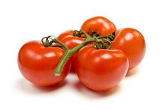 Vine Tomato Royalty Free Stock Images