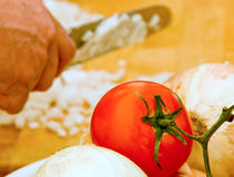 Vine tomato and onions Stock Images