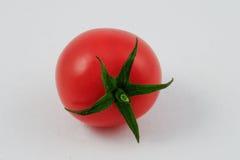 Vine tomato (Solanum lycopersicum) Royalty Free Stock Image