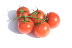 Vine tomatoes. Vine ripe tomatoes - pure white background Royalty Free Stock Photos