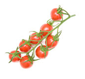 Vine tomatoes Stock Images