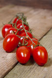 Vine tomatoes Royalty Free Stock Photography