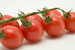 Vine tomatoes. On a white background royalty free stock photos