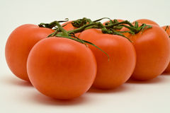 Vine tomatoes. On a white background stock photo