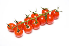 Free Vine Tomatoes Royalty Free Stock Photos - 5024098