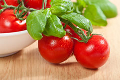 Vine Tomatoes & Basil Royalty Free Stock Photo