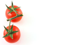 Vine tomatoes with copy space. Two isolated vine tomatoes with copy space stock photos
