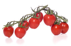 Vine tomatoes cut out Royalty Free Stock Photo