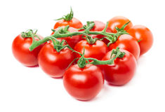Vine tomatoes, isolated Stock Image