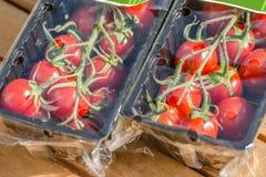 Vine tomatoes in plastic packaging 3 Stock Image