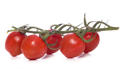 Vine tomatos Royalty Free Stock Photography