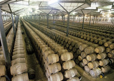 Vine warehouse Royalty Free Stock Photo
