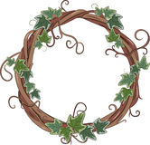 Vine wreath entwined with ivy. On white, vector illustration, eps-10 Royalty Free Stock Photo