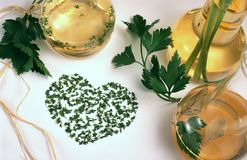 Free Vinegar, Oil And Herbs Stock Photo - 5385820