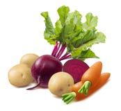 Vinegret ingredients isolated on white background royalty free stock photo
