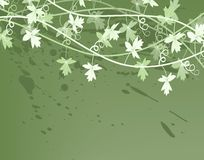 Vines. Editable vector illustration of a generic vine bush Royalty Free Stock Photo