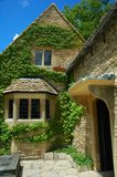 Vines on country cottage Royalty Free Stock Image