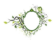 Vines Frame Royalty Free Stock Images