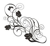 Vines and leaves. An illustration of vines and leaves in black and white vector illustration
