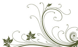 Vines and leaves pattern. Illustration drawing of beautiful green leaves and vines pattern Stock Photo