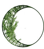 Vines on A Metal Crescent Structure Stock Photo
