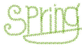 Vines of spring. The word green vines of spring , representing the vigor and vitality Stock Images