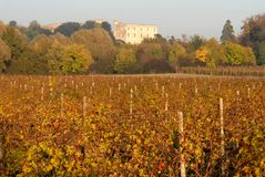 Vines and trees with colorful leaves and the distant castle Catajo illuminated by the sun in the province of Padua in Veneto (Ital Royalty Free Stock Image
