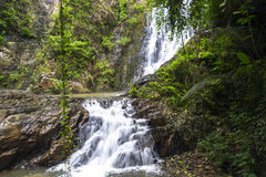 Vines, Waterfalls. Royalty Free Stock Photo