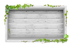 Vines and wood background Stock Photos