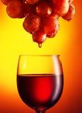 Vinexponeringsglas med rött vin, druvor arkivfoton