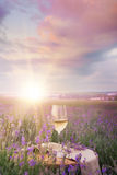 Vinexponeringsglas mot lavendel Arkivfoton