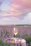 Vinexponeringsglas mot lavendel Royaltyfria Bilder